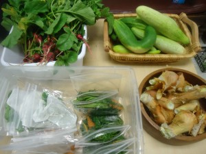 The goods at one of the five weekly Garden Giveaways